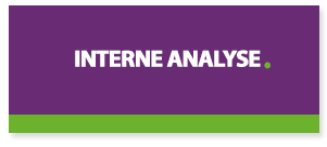 interne-analyse